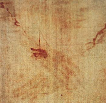 Résultats de recherche d'images pour «Le sang du Saint Suaire»
